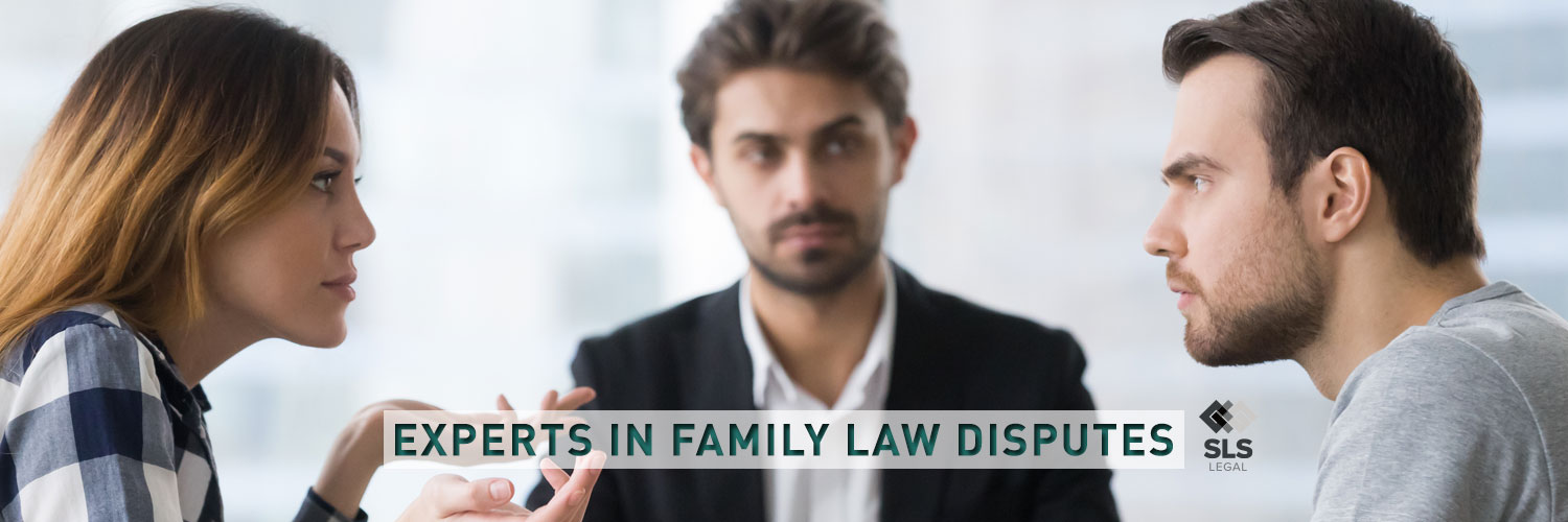 Experts-in-family-law-disputes